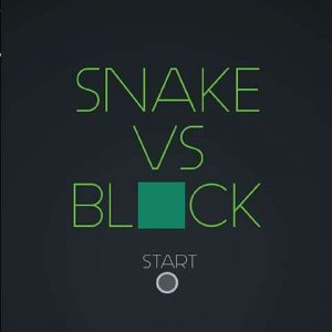 Snakes VS Digital Blocks