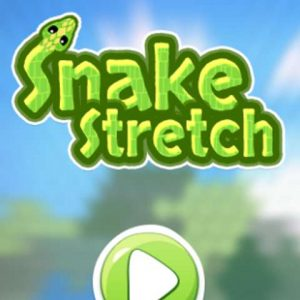 snake types game&action game snake Stretch