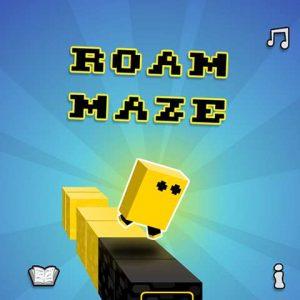Roaming maze